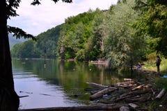 钓鱼在水坝Vidraru 免版税图库摄影