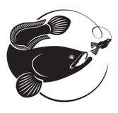 钓鱼在snakehead 免版税库存图片