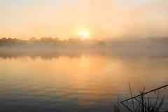 钓鱼有薄雾的湖法国的鲤鱼 免版税图库摄影