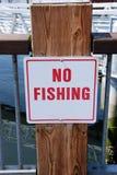 钓鱼没有 库存图片