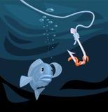 钓鱼注视在有蠕虫的一个勾子 免版税库存照片
