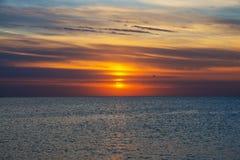 钓鱼海运海鸥天空的小船腾飞日出 免版税库存照片