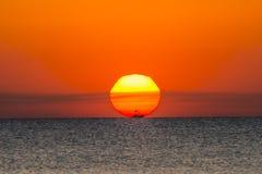 钓鱼海运海鸥天空的小船腾飞日出 库存照片