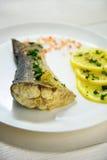 钓鱼用新鲜的草本和柠檬被蒸的海盐 免版税图库摄影
