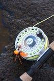钓鱼竿和在一个湿岩石的蜘蛛飞行 库存照片