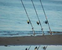 钓鱼竿岸 库存照片