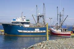 钓鱼纽芬兰的小船 图库摄影