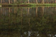 钓鱼者在日落时间附近的捕鱼湖 免版税库存图片