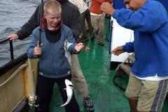 钓鱼者捕鱼年轻人 图库摄影