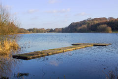 钓鱼者` s在湖的渔平台在Groomsport唐郡爱尔兰附近的Portavoe的 免版税库存图片