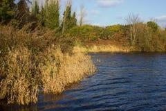 钓鱼者` s Portavoe的渔湖在Groomsport唐郡爱尔兰附近 免版税图库摄影