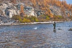 钓鱼转动在河的西伯利亚taimen的 免版税库存照片