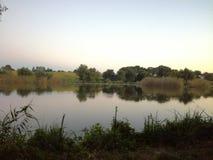 钓鱼鲤鱼的湖河钓鱼旅游业 库存图片