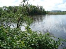 钓鱼鲤鱼的湖河钓鱼旅游业 库存照片