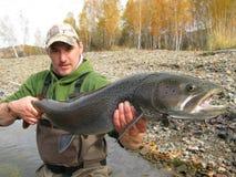 钓鱼-钓鱼在蒙古的taimen 图库摄影