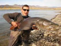 钓鱼-钓鱼在蒙古的taimen 库存图片