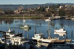 钓鱼launceston河tamar塔斯马尼亚岛的小船 免版税库存图片