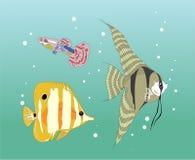 钓鱼stikers 免版税库存照片