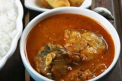 钓鱼Varuthuracha咖喱-喀拉拉样式鱼咖喱 库存照片