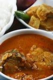 钓鱼Varuthuracha咖喱-喀拉拉样式鱼咖喱 图库摄影