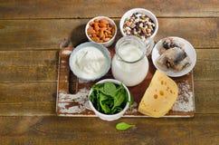 钙的食物来源 库存照片