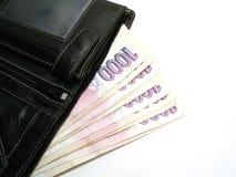 钞票捷克充分的钱包 免版税库存图片