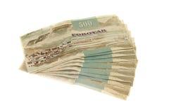钞票法罗岛 库存照片