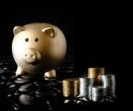 钞票美元财务图形鼠标计划 免版税库存图片