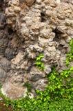 钟乳石岩石 库存图片