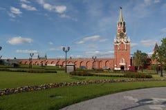 钟楼在春天,草和开花的克里姆林宫开花 库存图片