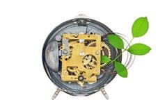 钟表机构绿色里面工厂技术 库存图片
