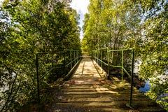 钢桥梁在桦树森林里 免版税库存照片
