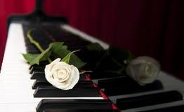 钢琴上升了 库存图片