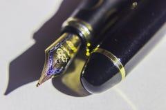 钢笔和鸟嘴 库存图片