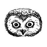 钢笔画的猫头鹰头剪影 库存图片