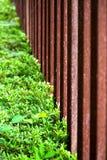 钢粱和植被 免版税库存图片