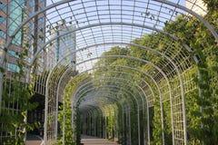 钢被成拱形的走廊 库存照片