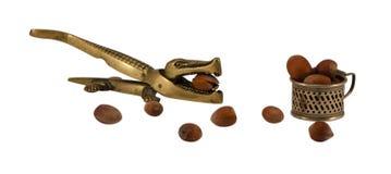 钢鳄鱼螺母易碎工具杯子大榛子 库存图片