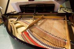 钢琴串 免版税图库摄影