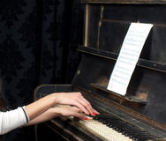 钢琴演奏家音乐家钢琴音乐使用 免版税库存照片