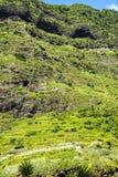 钦琼特佩克火山山在马德拉岛葡萄牙的海岛上的 库存图片