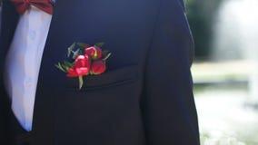 钮扣眼上插的花,新郎` s费,夹克的新郎 股票视频
