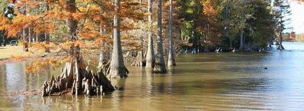 钱秋天的湖 库存照片