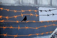 铁丝网和黑鸟的情感图象被绘在老墙壁在城市,罗切斯特,纽约一边, 2017年 图库摄影