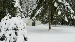 铁丝网围拢的小军事老地堡在冬天森林里 股票录像
