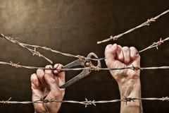 铁丝网用手 免版税库存照片