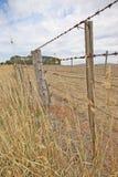 铁丝网篱芭和老灰色篱芭岗位在一个农村小牧场附近 库存图片