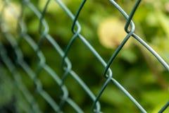 铁丝网篱芭在我的后院 免版税库存照片