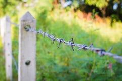 铁丝网篱芭在长得太大的植物中 免版税库存照片
