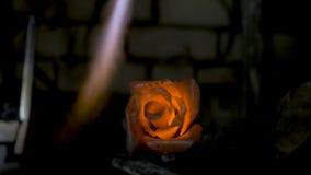 铁匠做铁上升了 人从铁做一朵玫瑰 免版税图库摄影